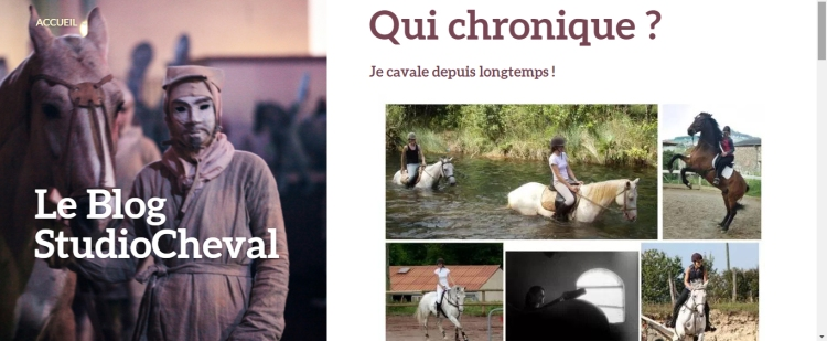 Blog chronique