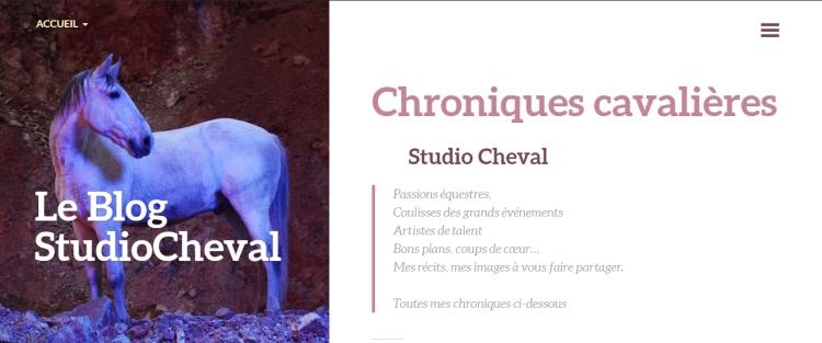 Blog chroniques