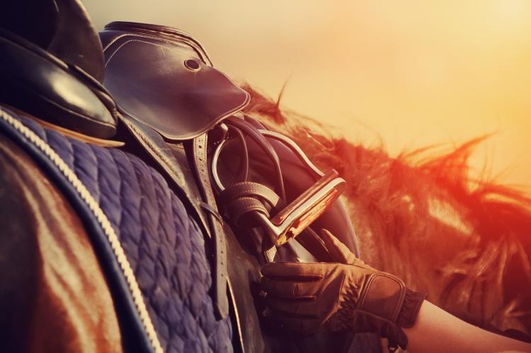 Saddle with stirrups studiocheval