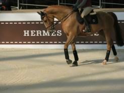 Saut Hermès © A. Picq 2014