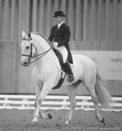 Stagiaire à plusieurs reprises pour perfectionnement dressage encadrés par la Championne internationale Bernadette Millot - Depuis 2009